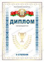 Диплом 2 степени Республика Беларусь
