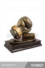 Награда бокс DC66021