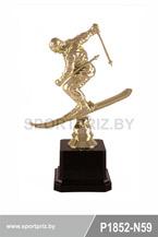 приз горнолыжный спорт P1852-N59