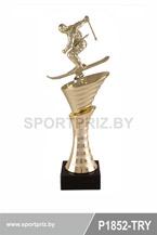 приз горнолыжный спорт P1852-TRY