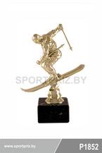 приз горнолыжный спорт P1852