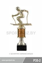 приз горнолыжный спорт P35-2