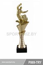 приз горнолыжный спорт P869-TRY