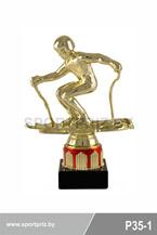 приз горнолыжный спорт P35-1