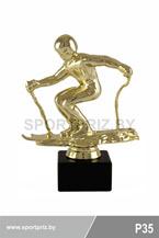 приз горнолыжный спорт P35